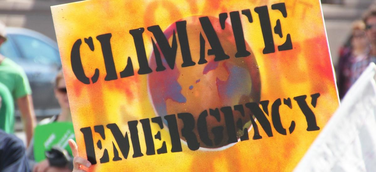 Climate Emergency protest sign