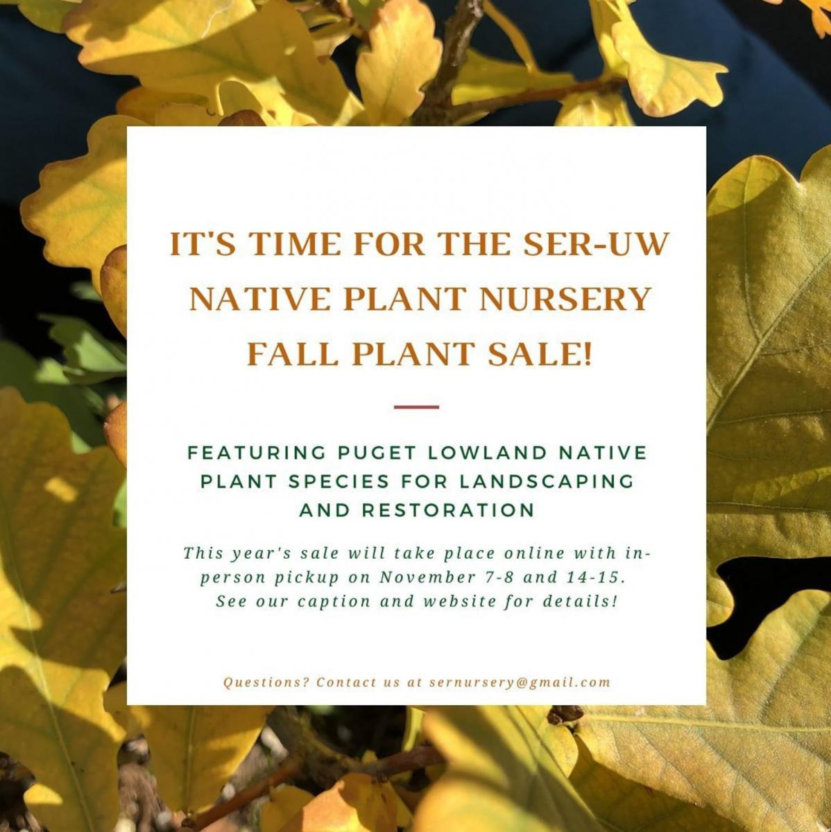 Native Plant Sale poster