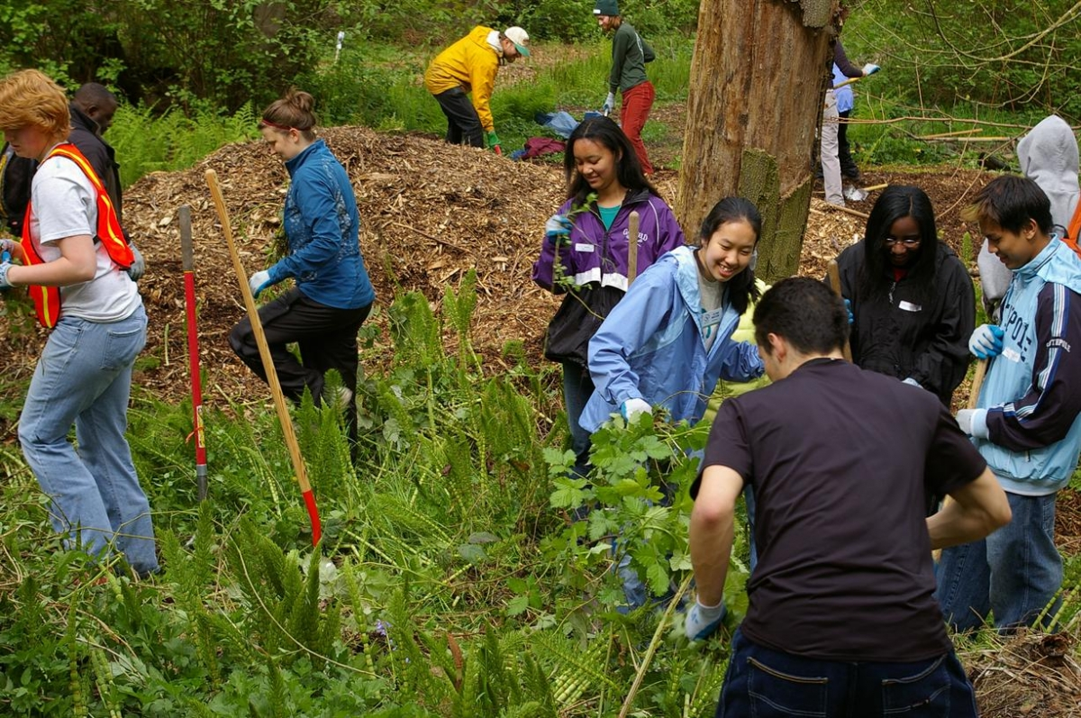 Earth Day restoration event at the Arboretum